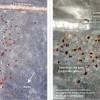 En plein désert, des réfugiés syriens à l'abandon découverts par image satellite